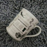 Jual Starbucks Mug Anniversary 13th Murah