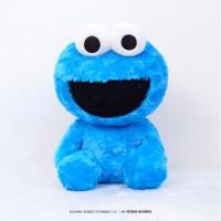 Istana Boneka Sesame Street Cookies 12 Inch