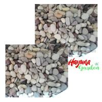 Jual Batu Koral Panca Warna  / Dekorasi Taman / Terrarium / Batu kecil Murah