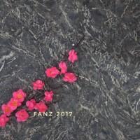 Alas foto wallpaper motif black marble untuk fotografi