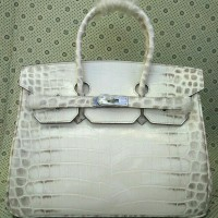 Tas Hermes kelly croco and himalaya