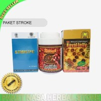OBAT HERBAL STROKE NASA/ AGEN NASA