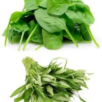 Paket Murah 6 Jenis Benih / Bibit / Biji Sayuran Hidroponik