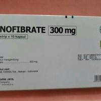 fenofibrate 300mg/hexpharm/generik liphantyl/obat kolesterol/ 30 kapsu