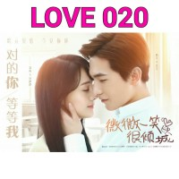 dvd film drama mandarin LOVE 020