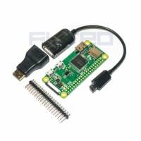 Jual Raspberry Pi Zero W - Built In Wireless WiFi Bluetooth Low Energy BLE Murah