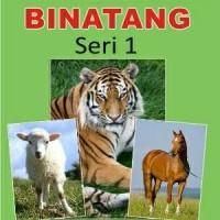 Kartu Binatang Seri 1 Flash Card Bayi Murah Hewan