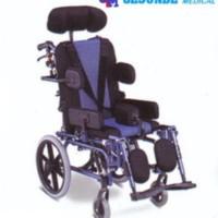Kursi Roda Cerebral Palsy CP (Kode : FS958LBHP) Limited