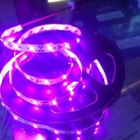 Led Strip Light IP 33-2835 (5Meter) Pink