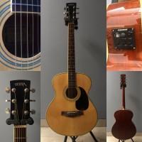 Ultra Akustik Elektrik Gitar Upgrade Fishman Isys Preamp