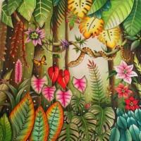 Jual Anti Stress: Rimba Raya (Magical Jungle) - Buku Mewarnai - Gramedia Murah