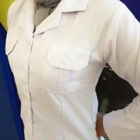 Baju Seragam Putih Wanita PNS Panjang Kerah Blus