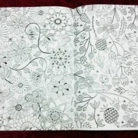Jual (Diskon) Buku mewarnai secret garden fun and joy coloring book Murah