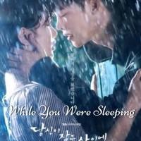 Film DVD serial drama korea While You Were Sleeping (isi 4 disc)