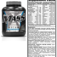 special ELITE MASS GAINER 3.3 lbs Dymatize Nutrition Resmi PT. DNI