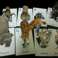 Jual Kartu Edukasi / Kartu Animasi Animal 4D / Animal 4D Card *** Terbaru Murah