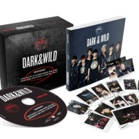 [CD Album Original] BTS - Dark&Wild