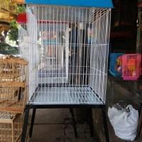 Kandang Burung beo Kaki warna biru ukuran Besar