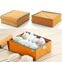 Jual NEW Organizer untuk BH/BEHA/ BRA - Underwear Storage Box BH Bra Murah