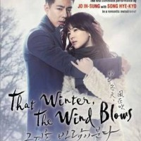 Film DVD serial drama korea That Winter, The Wind Blows (isi 4 disc)