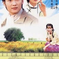 HATI YANG TERLUKA / TEARS IN HEAVEN = 5 DVD
