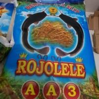beras slyp super rojolele 10kg gojek only