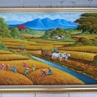 Lukisan Pemandangan Panen Padi Sawah Sapi