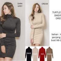 Jual Jual Turtleneck Sweater Dress Special Price Murah