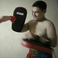 thaipad thai pad atau kicking pad untuk muaythai karate taekwondo