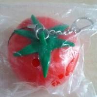 Jual (Sale) Squishy Tomat Strechy Murah