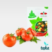 Jual Panah Merah Urban Farming Seed Tomat Murah