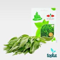 Jual Panah Merah Urban Farming Seed Kangkung Murah