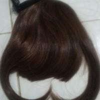 Jual laris Hairclip Poni depan Ayumi Murah