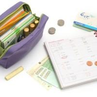 Jual bank book dompet organizer buku tabungan uang kertas logam hhm075 LA Murah
