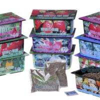 Jual LARIS Kebun tanaman mini buah sayur Mama Garden Creative Product Farm Murah