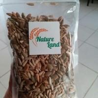 Jual Roasted Mixed Pumpkin Sunflower Seeds 1 Kg Murah