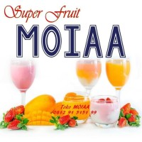 Jual Limited Edition MOIA | MOYA | MOIAA Premix Silky Pudding | Puding Murah