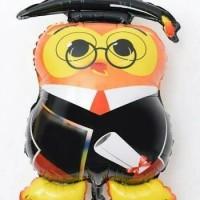 Jual (Diskon) Balon Foil Graduation Owl / Burung Hantu Murah