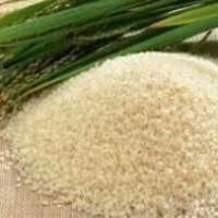 Jual (Murah) Organic pandan rice (beras pandan wangi organik) Murah