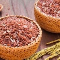 Jual (Diskon) Organic Red Rice (Beras Merah Organik) Murah