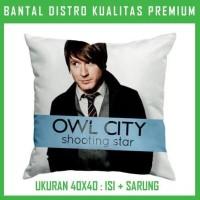 Jual Bantal Owl City 7 OWCT07 Bantal Sofa/Mobil Murah