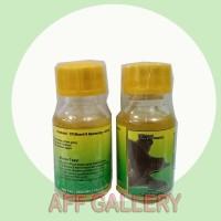Minyak Bulus Nori Original 15 ml