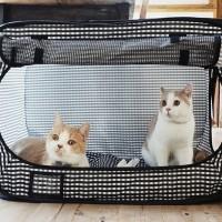 (Diskon) Portable Cat Cage - Kandang Kucing