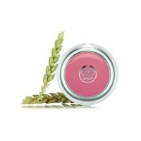 The Body Shop Blush On All In One Cheek Colour Flushed