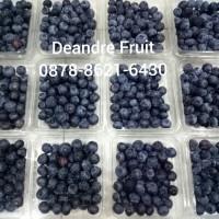 Buah Beku IQF Blueberry Frozen 1/2kg Harga TERMURAH DIJAMIN MURAH
