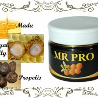 Multivitamin Mr Pro Madu dan Propolis Original HWI GC161