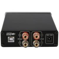 Topping TP23 Class-T Digital Amplifier Tripath TA2021 w Berkualitas