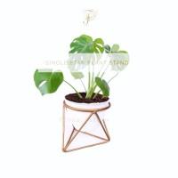 Jual Rak Pot/ Vas Bunga Minimalis, Plant Stand, Pot Stand -Gold- Murah