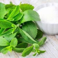Jual Daun Stevia Manis Gula Diet Diabetes Pemanis Sugarleaf Sweetener PD002 Murah
