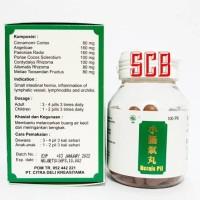 [PROMO] Hernis Pil - Obat Hernia / Radang Buah Pelir